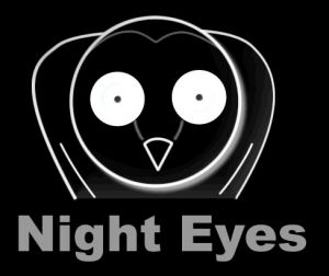 Idea night eyes logo black.jpg